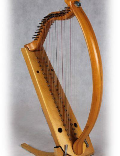 Arpa doble aragonesa. Double Aragón harp 5