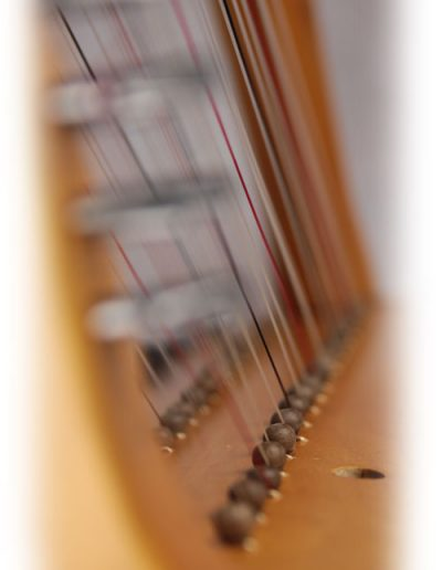 Arpa doble aragonesa. Double Aragón harp 1