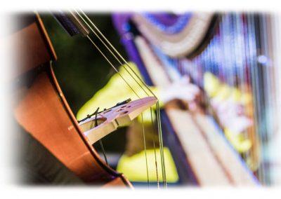Sentmenat international harp festival