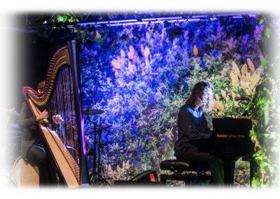 Sentmenat international harp festival 1