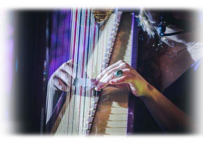 Sentmenat international harp festival 2