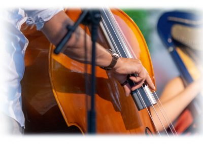 Sentmenat international harp festival 4