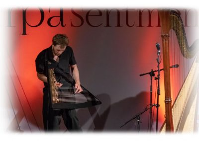 Sentmenat international harp festival 5. Sasha Boldachev