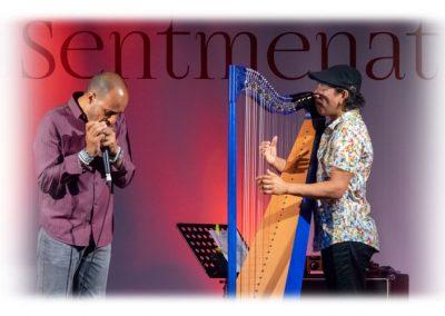 Sentmenat international harp festival. Edmar Castañeda